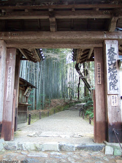 A entrance of Jizo-in Temple, with a path surrounded with full of bamboo, in Kyoto