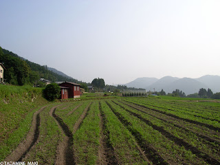 Traditional face of the countryside, at Ohara, in Kyoto