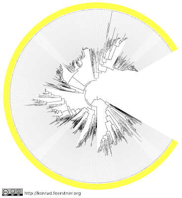 The Dao Of Flow Pac Man Phylogenetic Tree