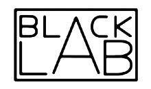 [BLACKLAB+bLOGO+2+copia.jpg]