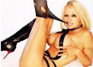 Pamela Anderson andrà in pensione nel 2012