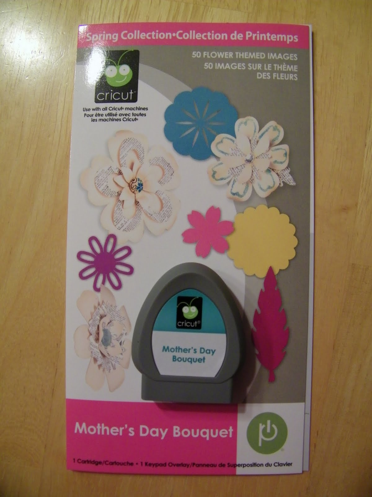 Pam Bray Designs A Girl With Flair Cricut S Mothers Day