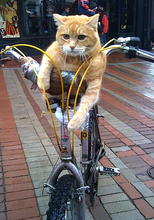 Night Cat Productions: BulletproofCourier: Friday Night Cat Bike