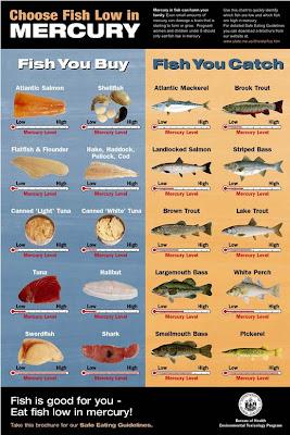Pharmalogik mercury contaminations in fish for Does fish have mercury