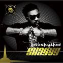 Shaggy feat Akon - What's Love mp3 download lyrics video audio free tab ringtone audio music rapidshare youtube zshare 4shared mediafire
