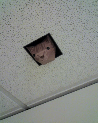 Papercraft ceiling cat