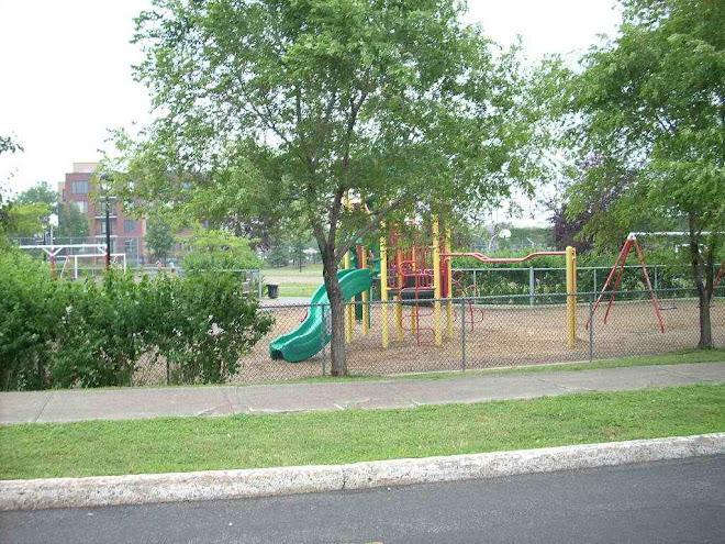 park (across the street)