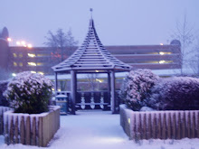 Could you see the cool gazebo in Winter