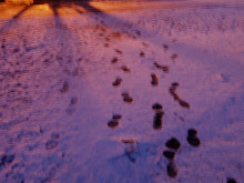 Do We Leave Footprints on the lives of others like these on the snow?