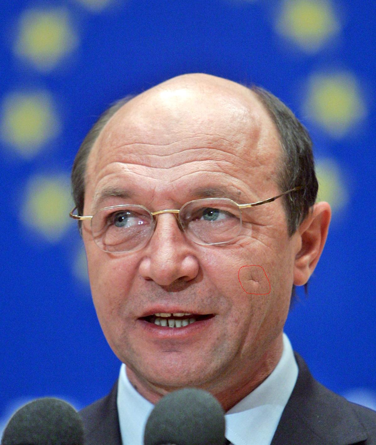 Traian Băsescu – Wikipedia, wolna encyklopedia  |Traian Basescu