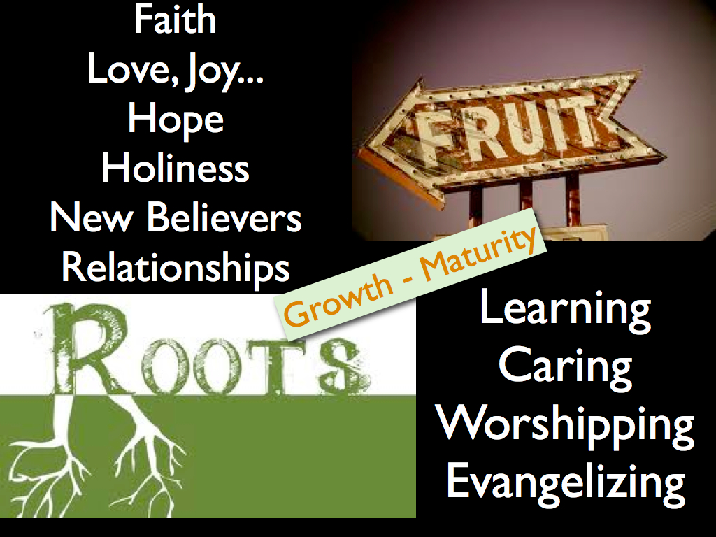 Roots and Fruit – Acts 2:42-47 – Audio – Calvary Chapel Cape Cod
