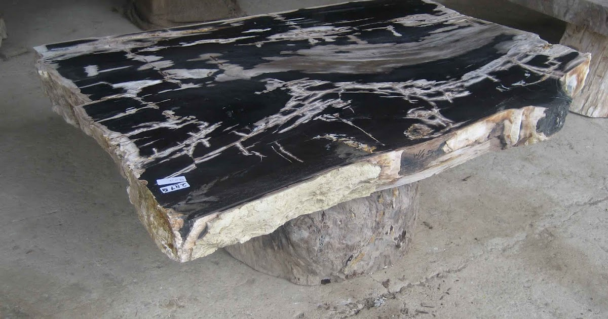 Endurance Car Insurance >> home and garden: PETRIFIED WOOD TABLE TOP
