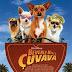 'Beverly Hills Çuvava' filminin hediyelerini kazanma şansı