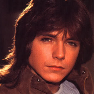 Men Fashion And Hairstyle Men S Fashion Haircut Styles With Image David Cassidy Hairstyles With Classic Men S Shag Haircuts Gallery Picture