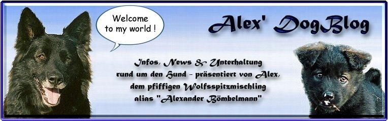 Alex DogBlog - Hundeblog. Hunde - Infos & Unterhaltung