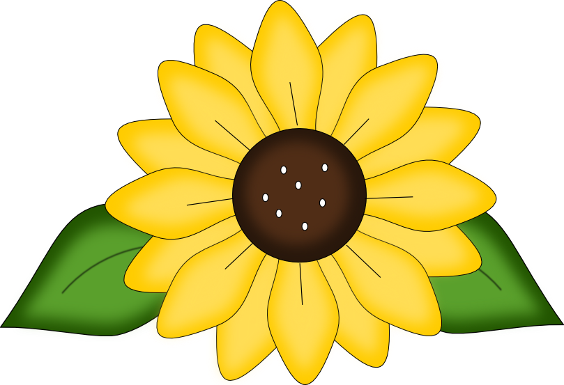Free Sunflower Svg Pattern And Png