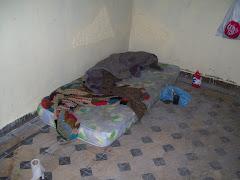 Dormitorios de los boxer