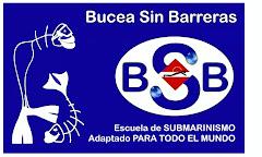 B.S.B. - Bucea Sin Barreras: POR LA IMAGEN NOS CONOCERÁS