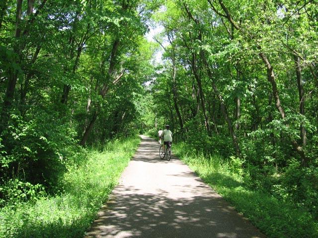 [summer+trail.jpg]