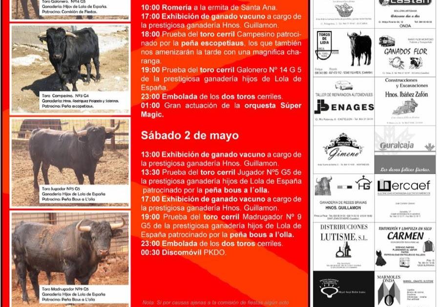 image Encierro de guadalajara 2015