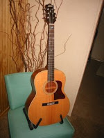 The Ones That Got Away: Hohner Gruhn Design Acoustic