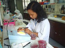 Penelitian Bioteknologi