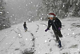 A white Christmas at Mt Donna Buang in Victoria. Photo: James Boddington