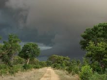 Storm Brewing, Namibia Dec 2006