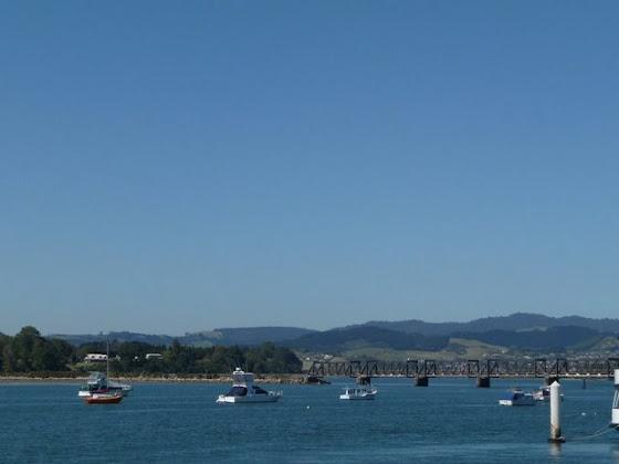Otra foto más de Tauranga City