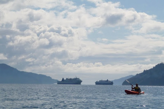Más paisaje y kayak en Picton