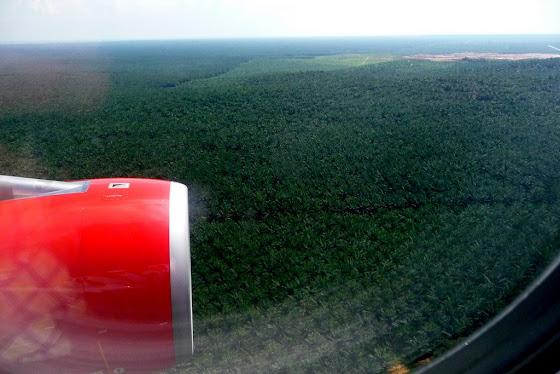 Esto se ve desde el avión