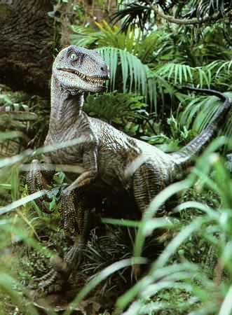 Glorching Gators: July 2010