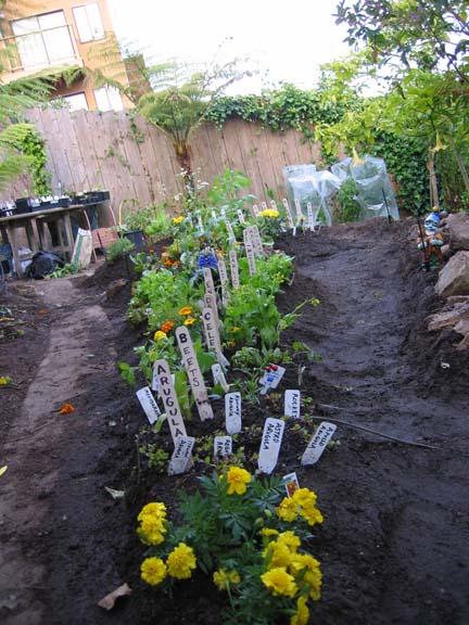 [garden-2007-IMG_33_7x8.jpg]