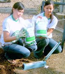 Green Phoskko® (GP-3) Pupuk Kompos