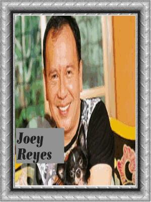joey javier-reyes