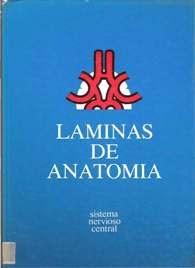 Láminas de Anatomía - Sistema Nervioso Central 1