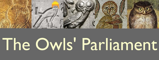The Owls' Parliament