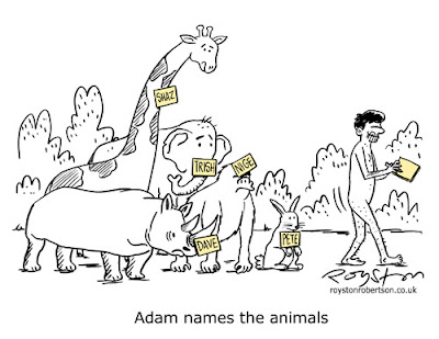 the names for the animals