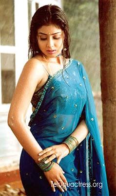 Shreya wet in Saree