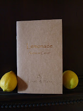 Lemonade - Notes To Cancer
