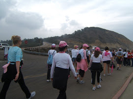 Heading For Torrey Pines State Reserve