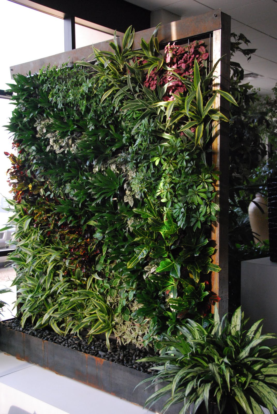 The garden plot growing up - How to make a living wall ...