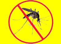 antimosquitos online