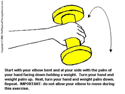 Elbow / Wrist Exercises from ThePhysicalTherapySource.com: Elbow ...