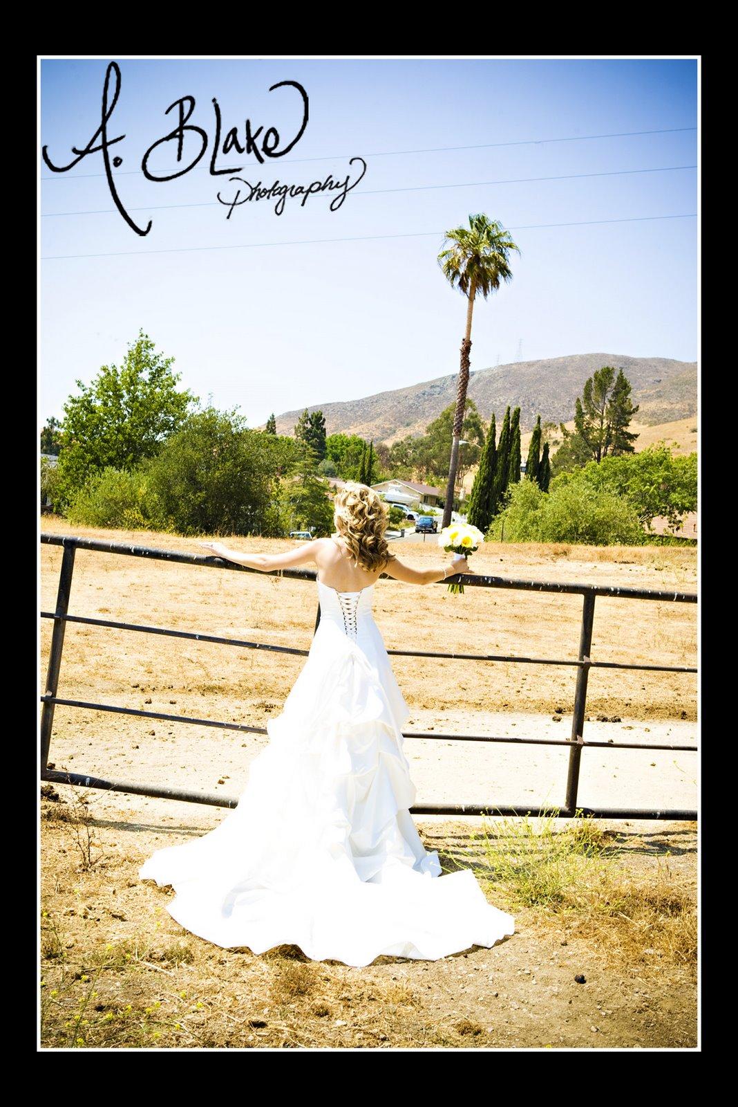 [Muhly+Wedding120.jpg]
