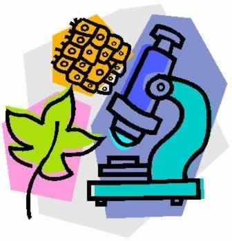 Jurnal Perkembangan Biologi Undip E Journal System Portal Hakikat Biologi Biologipedia