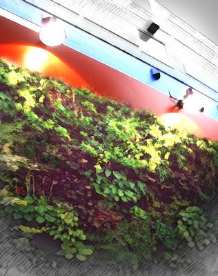 Cuaderno de campo y taller muros verdes for Materiales para un muro verde