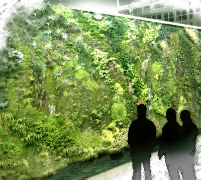 Cuaderno de campo y taller jardines verticales naturales for Muros verdes naturales