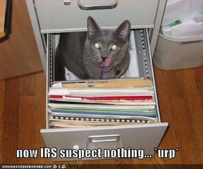 Admit it: you'd hire CPA Cat if it meant no audits.