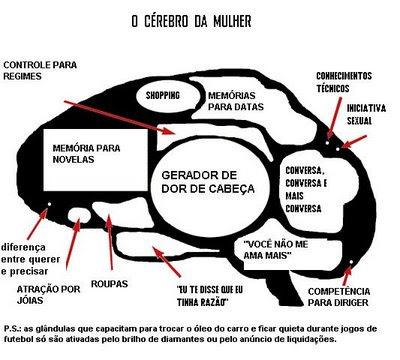 https://1.bp.blogspot.com/_wYDa9x_VCjk/SYDicO4M5HI/AAAAAAAAAGo/ZpGWkTwgUQc/s400/cerebro+mulher.bmp